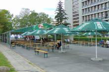 namiot-z-parasolami